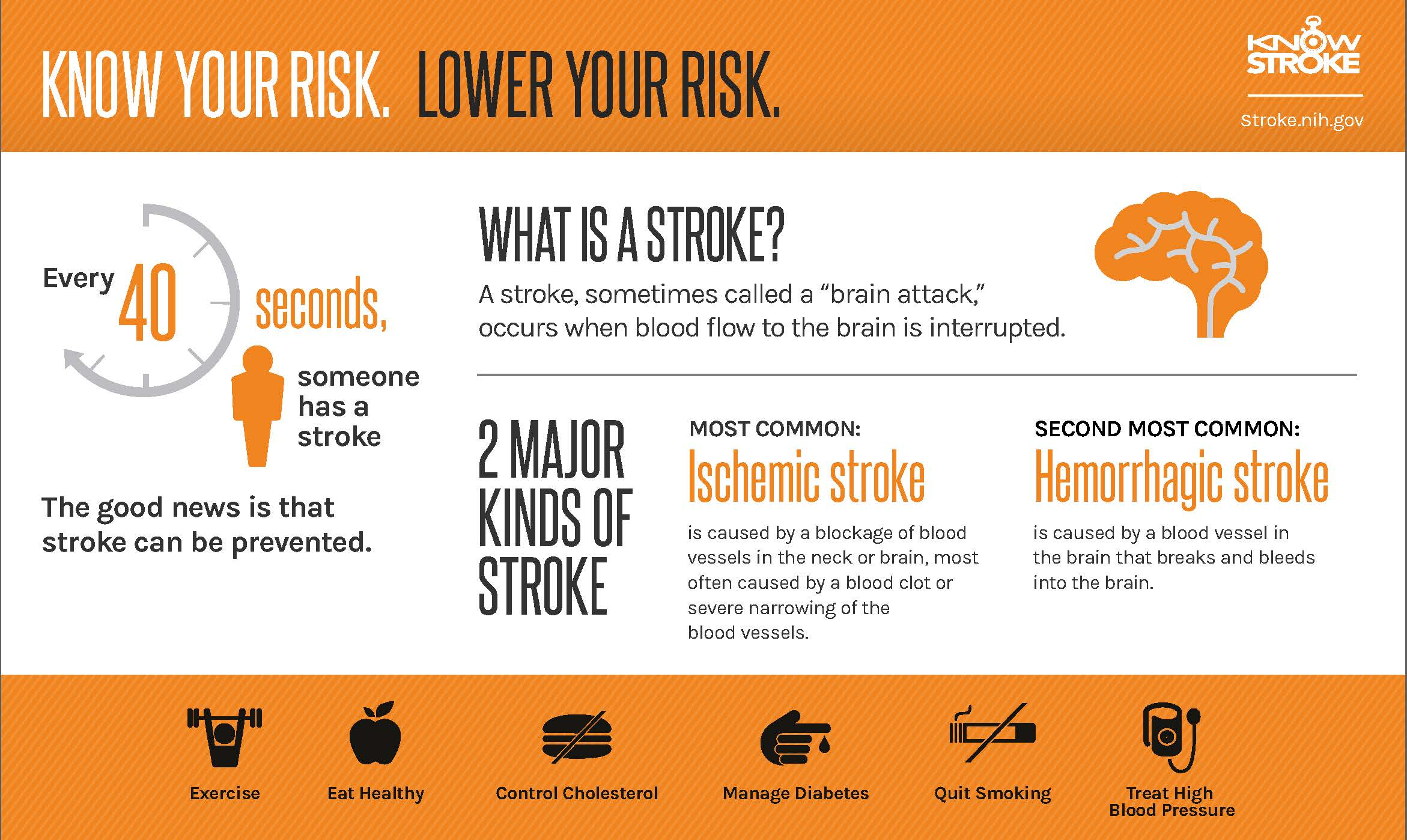 NINDS Know Your Risks Infographic
